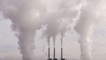 Bagaimana Polusi Udara Dapat Mengurangi Kecerdasan Kita