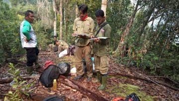 """Dubalang, Sang Penjaga Hutan Larangan Adat """"Imbo Batu Dindiang"""", SM Bukit Rimbang Bukit Baling"""