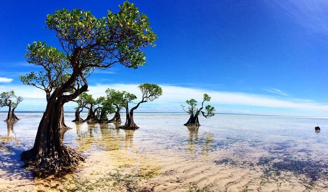 Gambar 3. Pantai Walakiri, Sumba