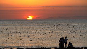 Melirik Potensi Pengembangan Ekowisata di Pantai Oesina